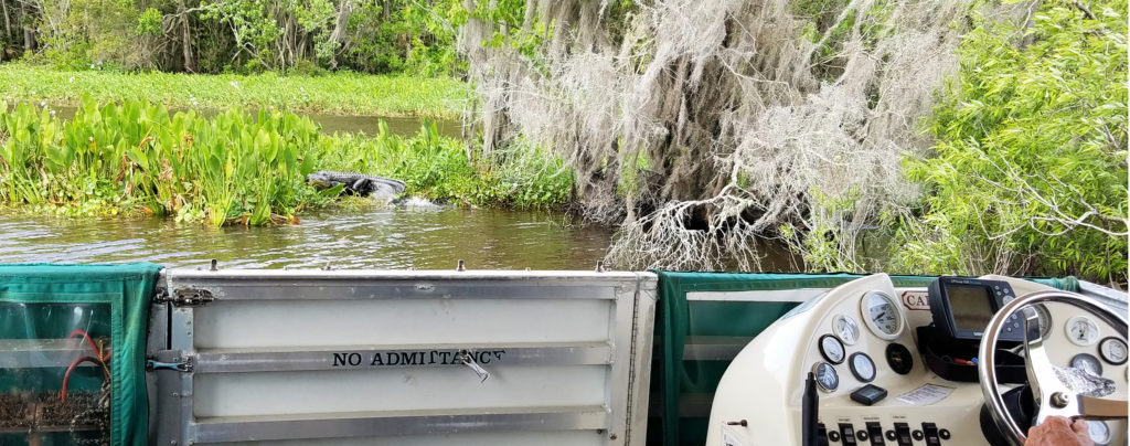 Our Florida Fun: Fountain of Youth Eco / History Boat tour